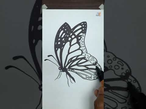 Butterfly drawing   how to draw butterfly   black and white butterfly clipart #drawing #butterfly